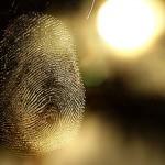 fingerprint2 150x150 Tired of the 9 to 5